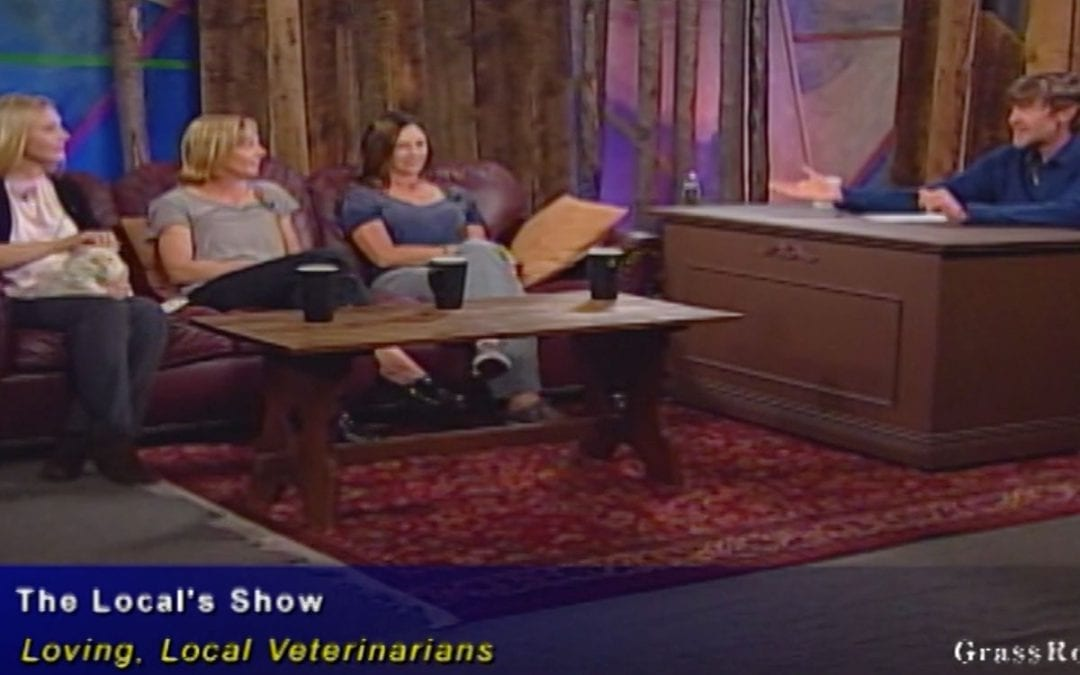 Our Veterinarians Appeared On The Local's Show