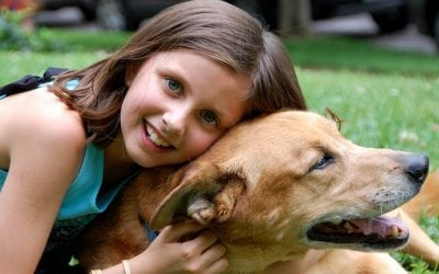 Keeping The Peace Between Kids and Pets