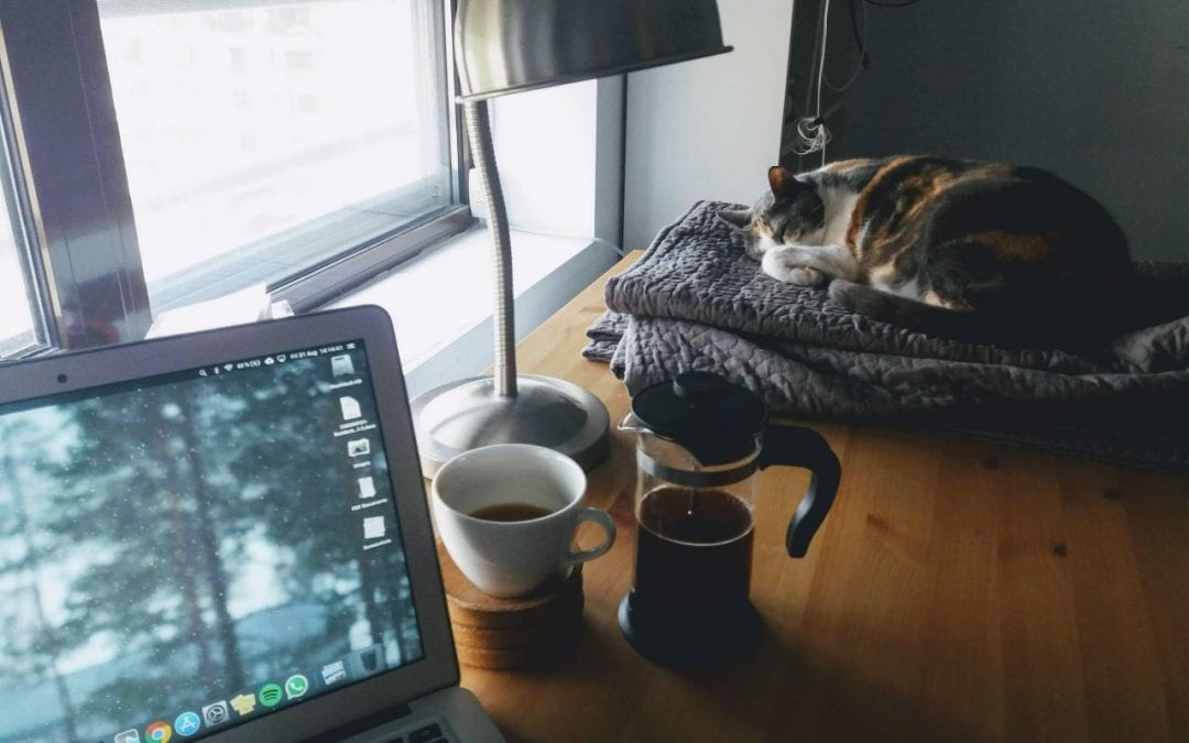 Tips for Working From Home With Your Pet